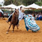 A Paso Horse dancing with a female folk dancer