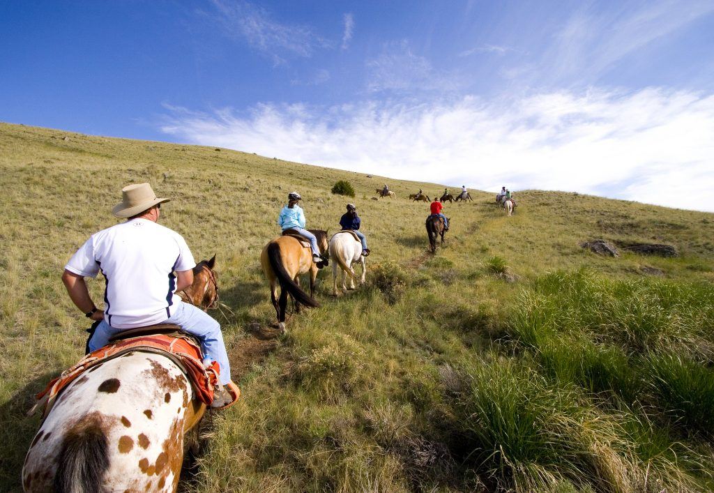 Blog - Horseback riding