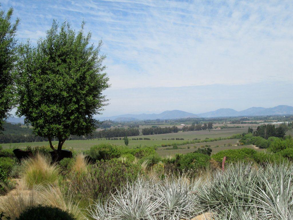 Gorgeous Views at Lapostolle Residence