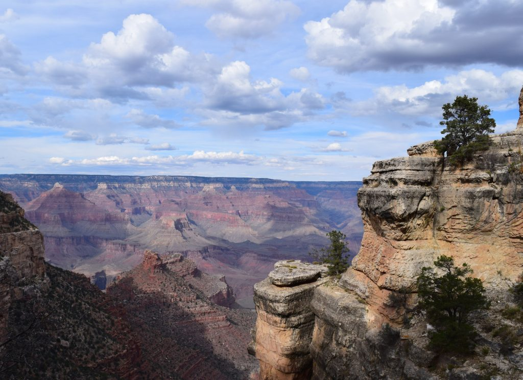 Grand Canyon View by Megan Murphy