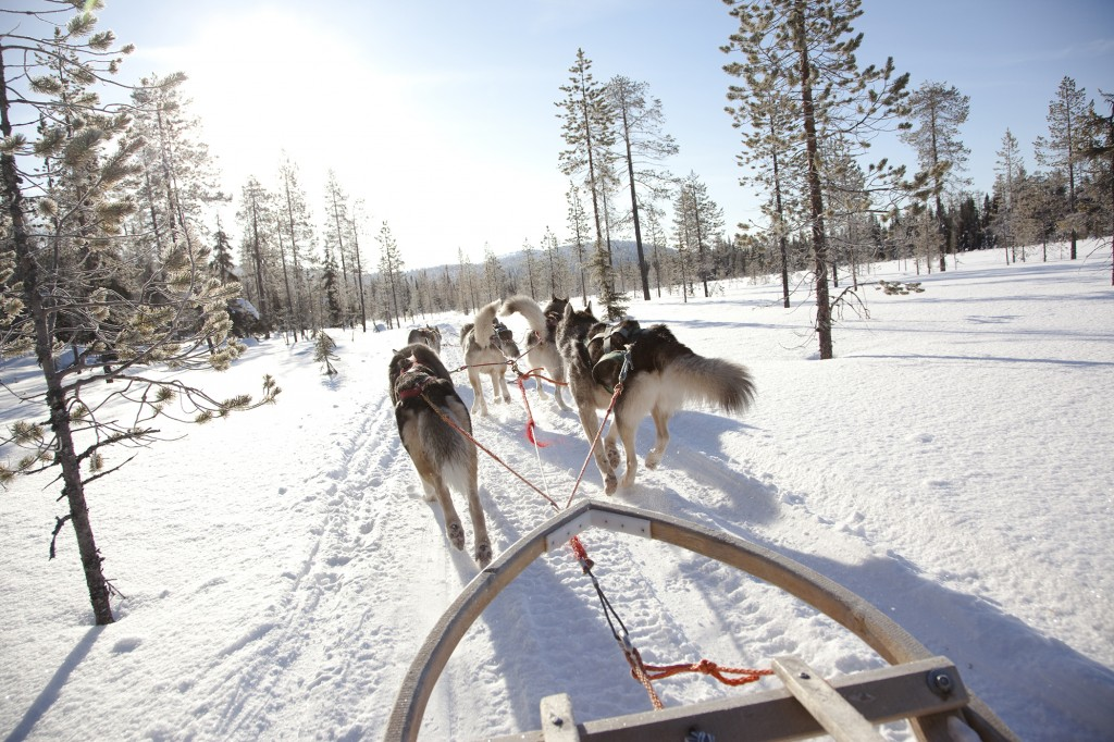 Alexander + Roberts Finland's Lapland – Winter Adventures in the Arctic Circle