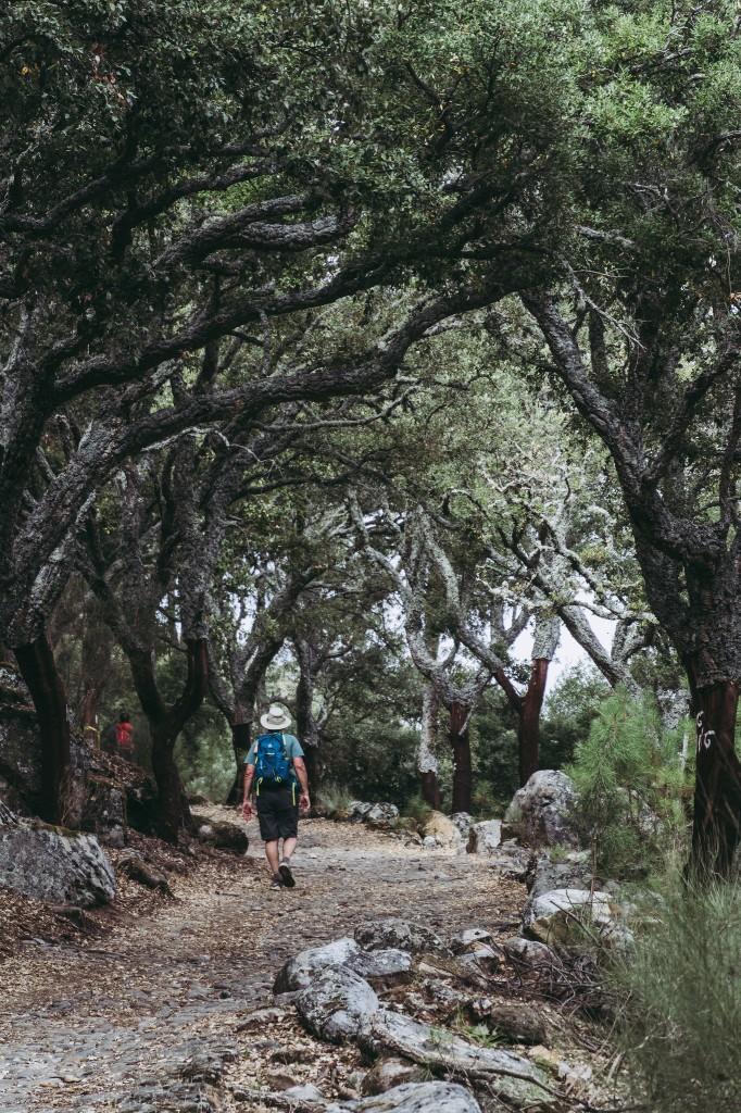 Portugal - Parque Natural de Serra de Sao Mamede