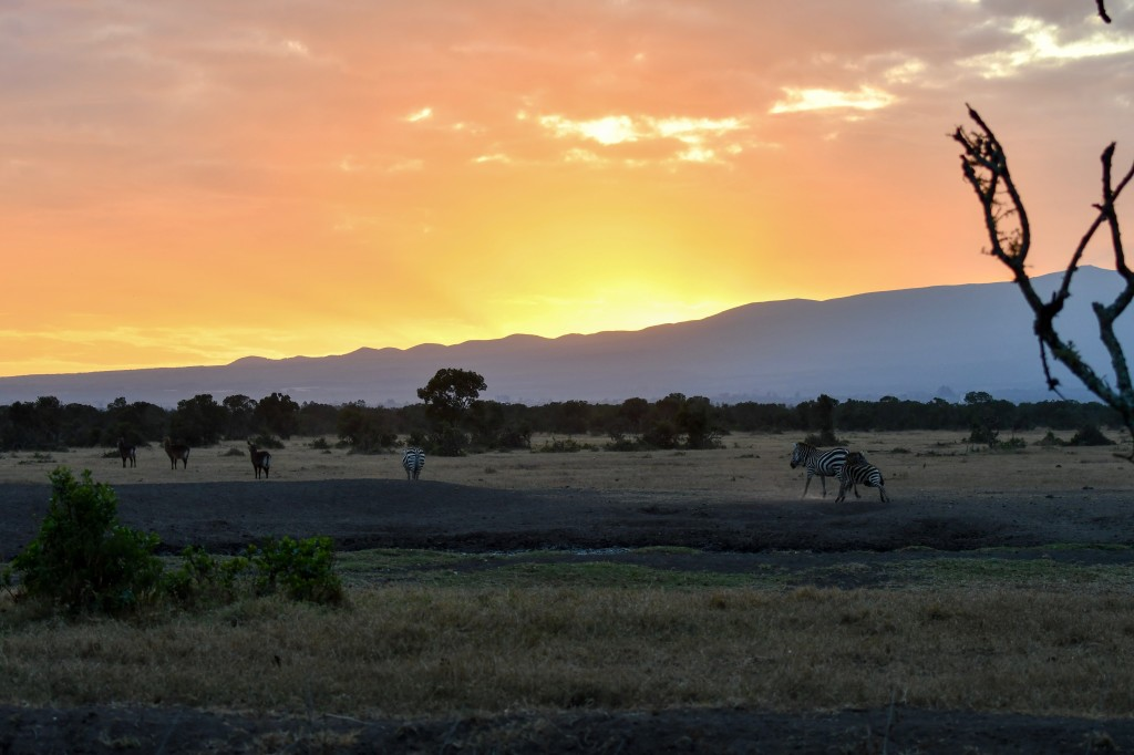 2. Spectacular sunrise over Mount Kenya in Ol Pejeta