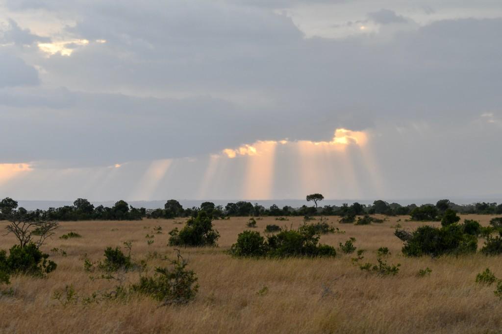 9. Glorious sunbeams peeking out from an overcast sky
