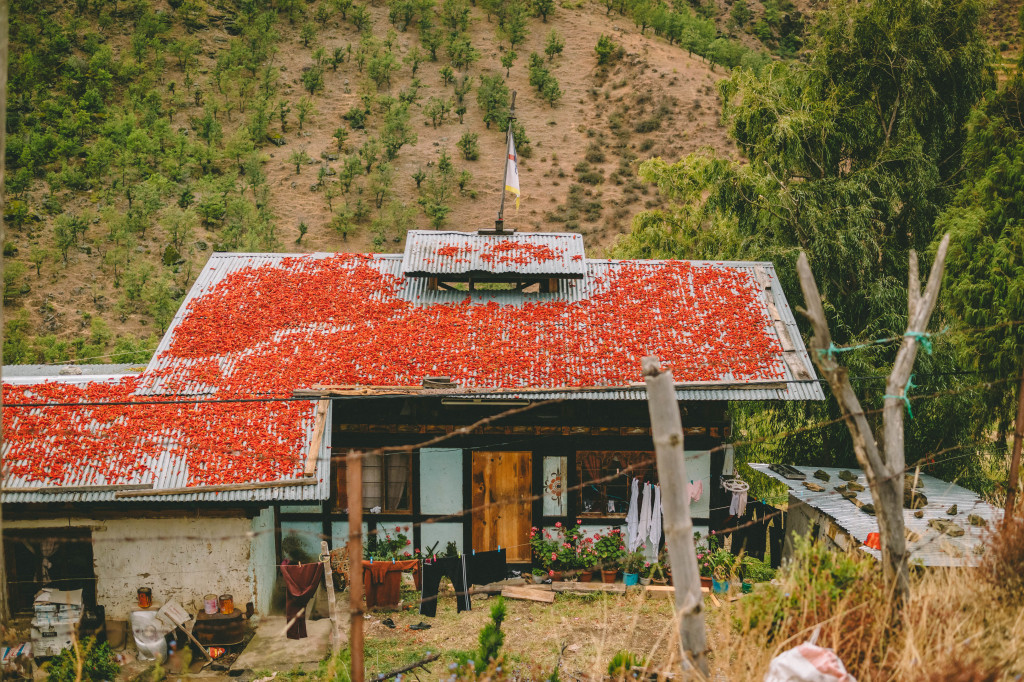AFAR_NEPAL-BHUTAN_LUXURY-GOLD-3408