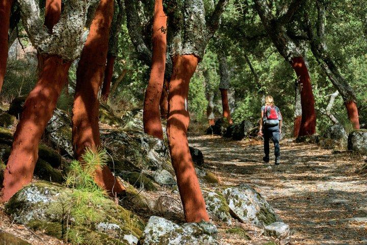 portugal-alentejo-marvao-galegos-hike-medieval-path-720x480-74214296-9d5a-401e-acdf-3e5f9bebcf93