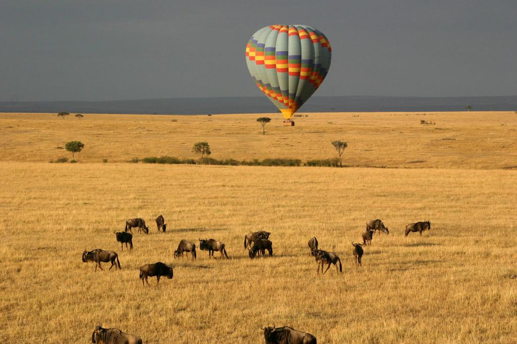 Masai Mara_ Credit_shutterstock_41651095