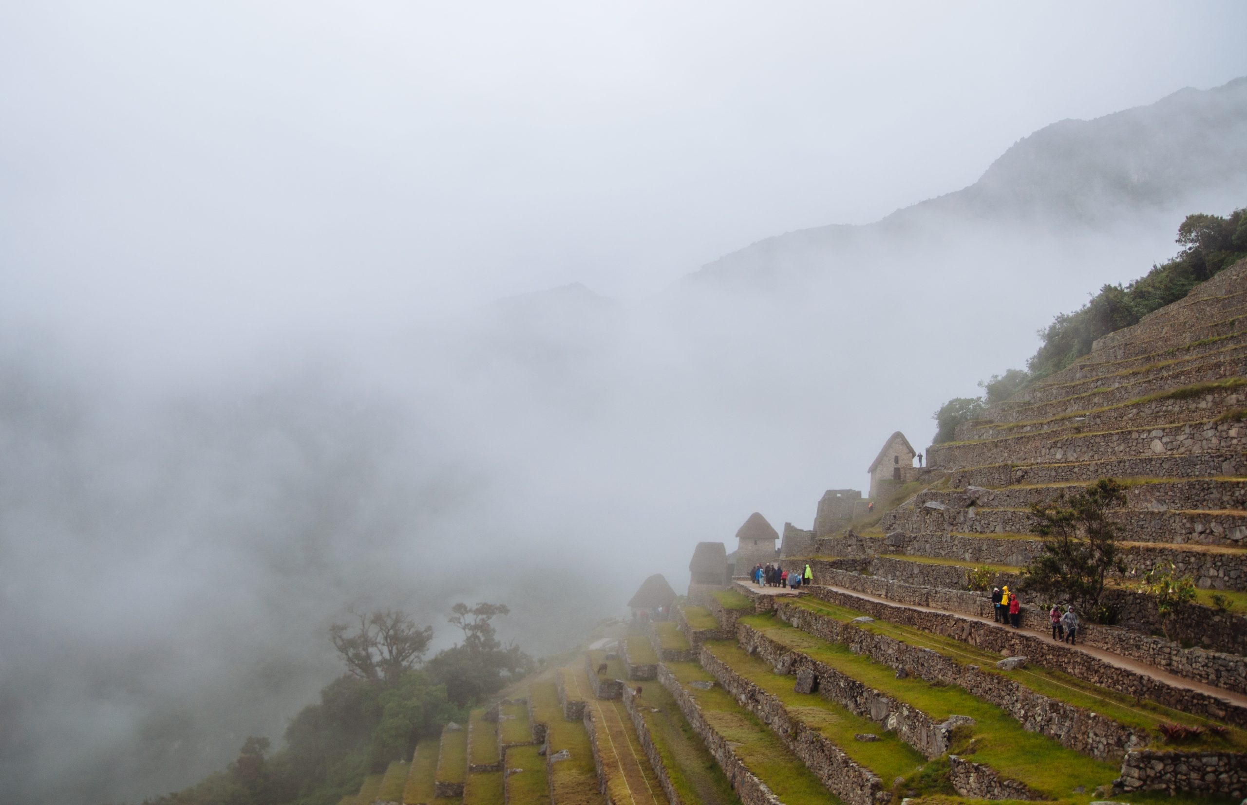 The lush vegetation can be attributed to the humid atmosphere in The Machu Picchu Complex
