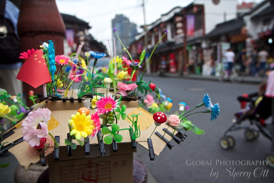 China's latest craze sold on the streets of the Old Town – flower sprouts