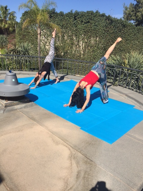 Yoga with Perillo's Learning Journeys in Malta