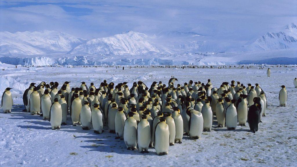 Antarctica (Credit: Goway Travel)
