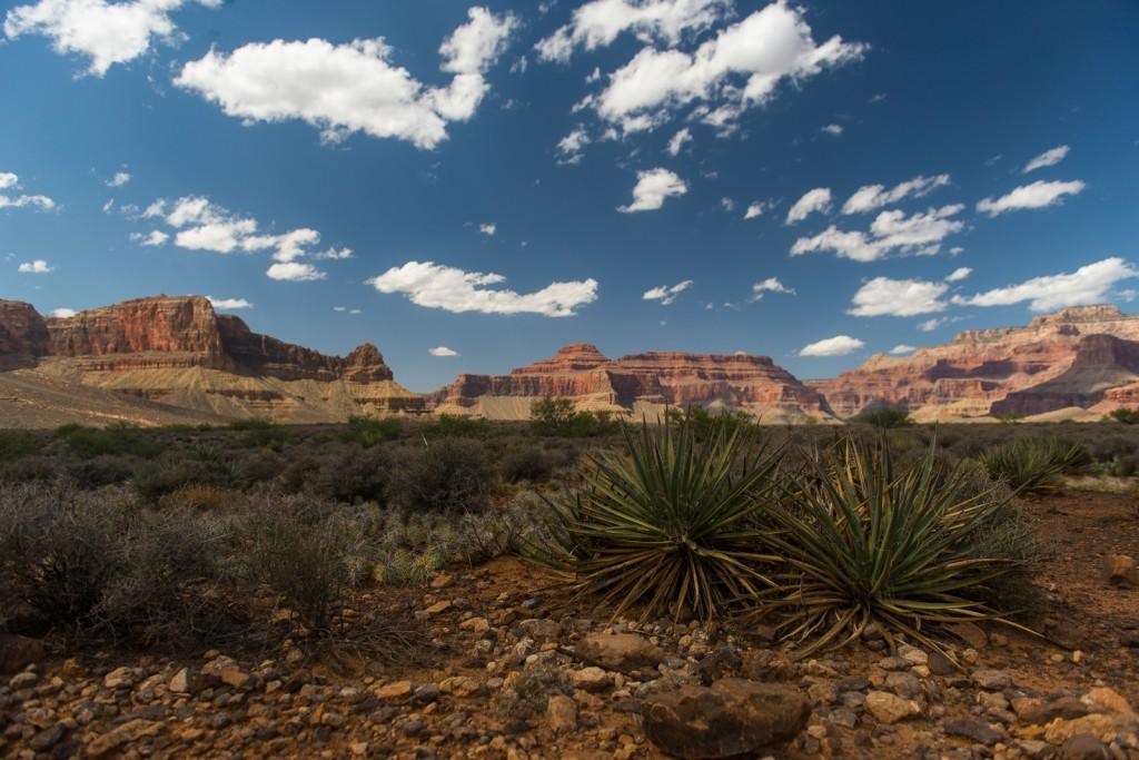Go Ahead U.S. National Parks Tour (credit: Flash Parker)