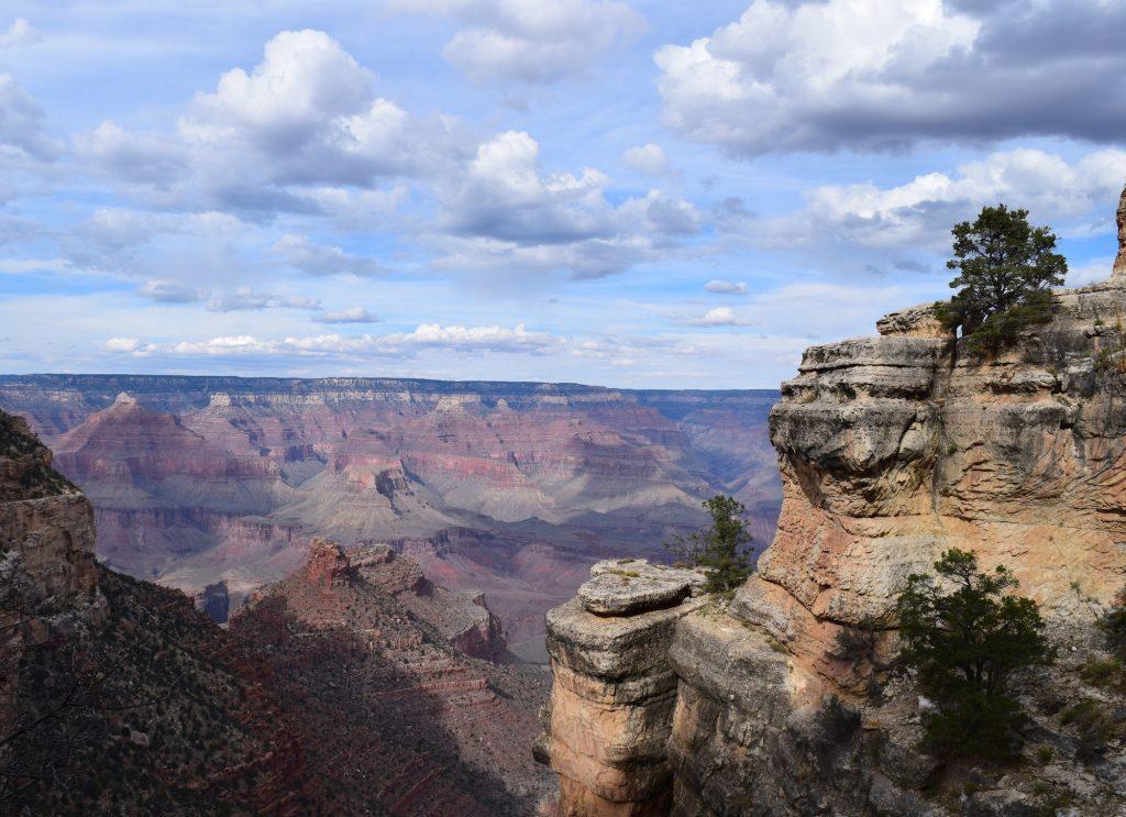 Grand Canyon View by Megan Murphy