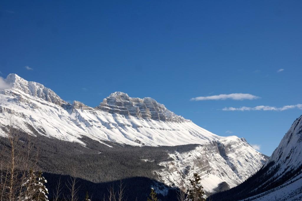 Collette's Canada Winter Wonderland