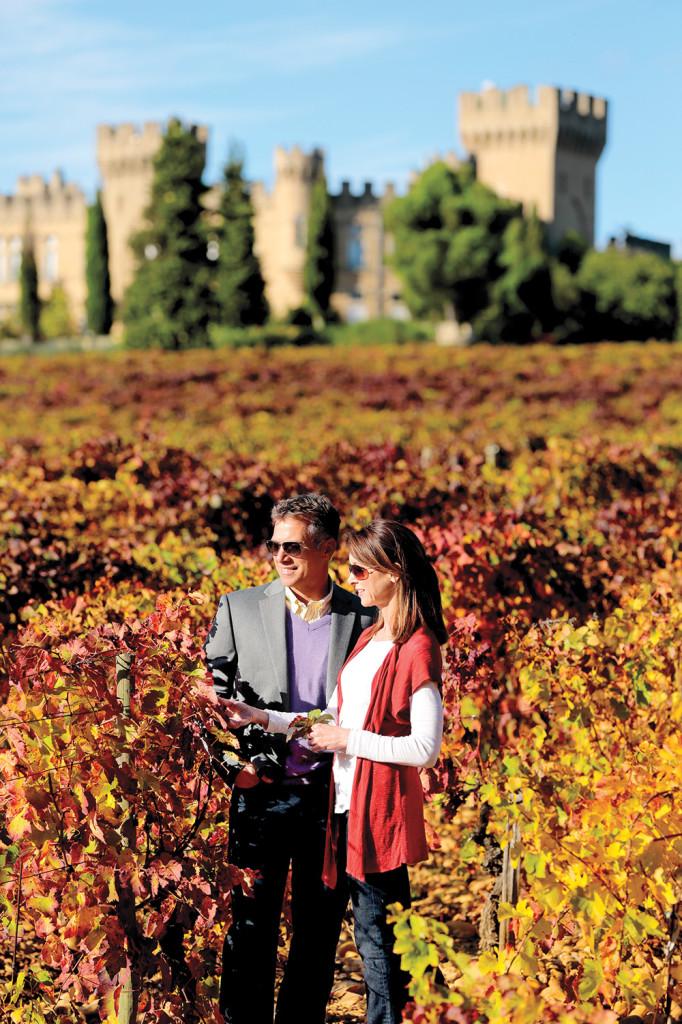 Fall-Vineyard_ChateauPape-de-Neuf