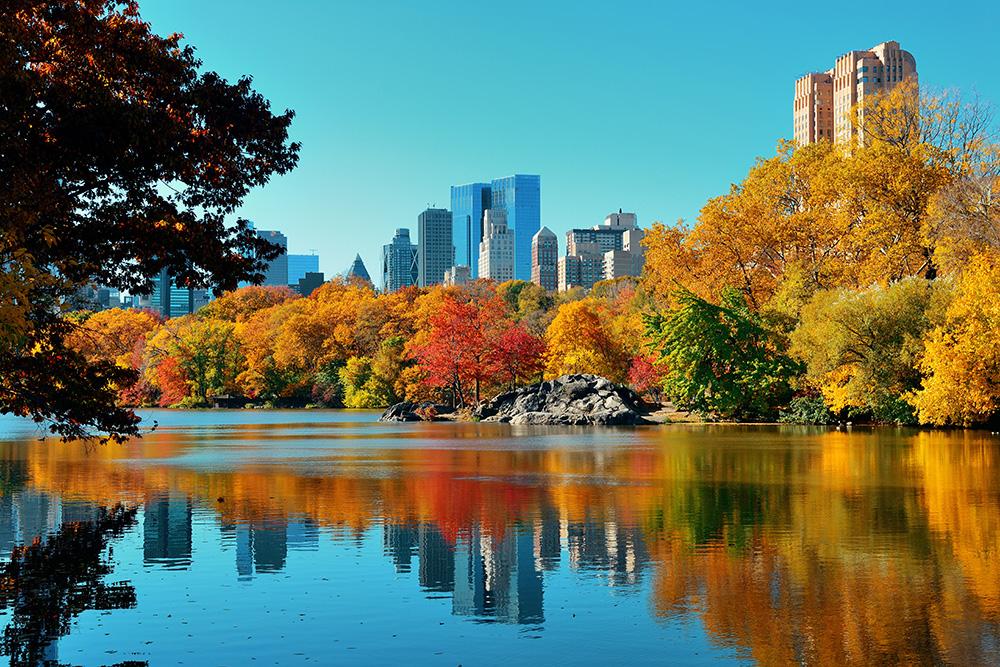 NO-CREDIT-NEEDED-USTOA_Autumn-Leaves1[2]
