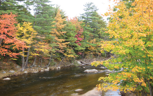 courtesy-of-Tauck-New-Hampshire-river-in-fall-I