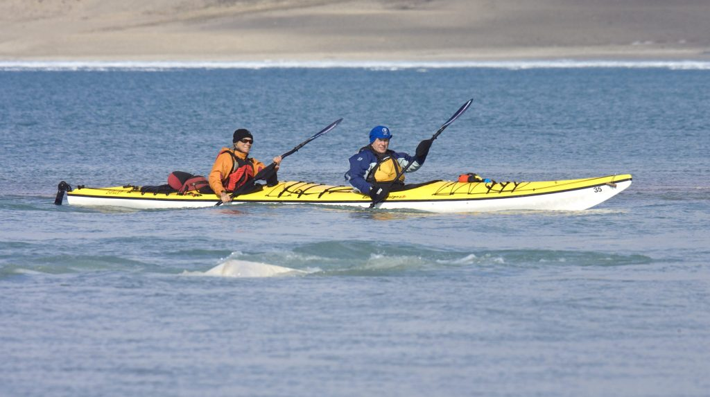 Kayaking-CunninghamInlet-courtesy-ArcticWatch