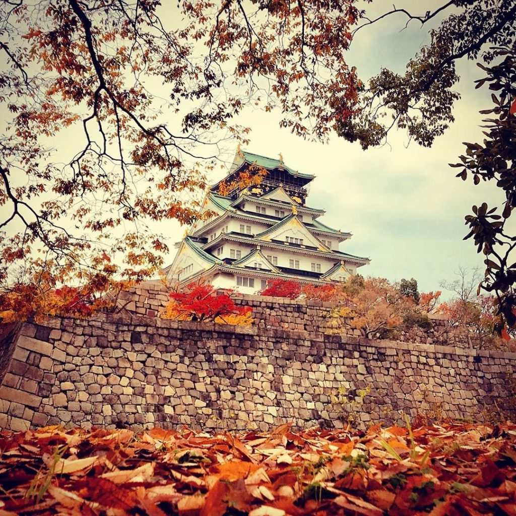 Himeji Castle photo credit: @danminsighttd