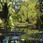 Ten Great Gardens of Europe