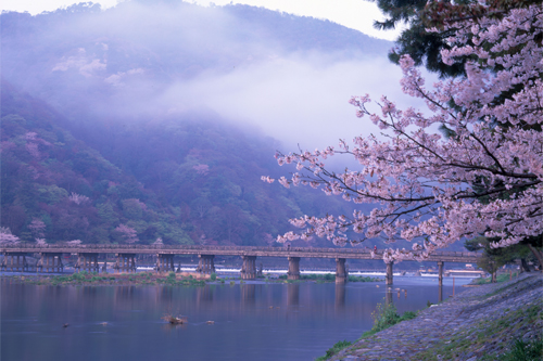 wwt_home_image_japan